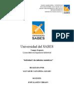 ACT-03-MN-Castañeda-Alfaro-Salvador.docx