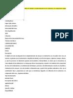 TEMAS DE INVESTIGACION.docx