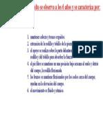 PATRON MADURO DE SALTO.doc
