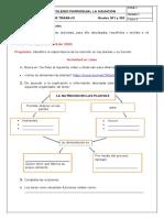 Guía de trabajo Nutrición en plantas