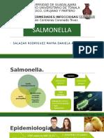 Salmonelosis Infecto