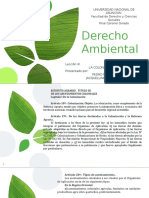 AMBIENTAL LECCION XI.