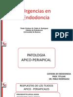 urgenciasendo.pdf