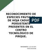 RECONOCIMIENTO DE ESPECIES FRUTALES DE HOJA CADUCA Y PERSISTENTE PRESENTES EN EL CENTRO TECNOLÓGICO DE PIRQUE..docx