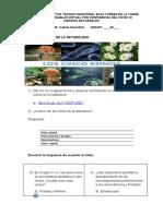 TALLER 1 DE LOS REINOS DE LA NATURALEZA 3 GRADO  (1)