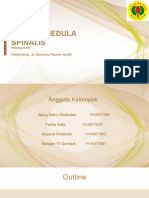 CEDERA MEDULA SPINALIS - KELOMPOK 8A