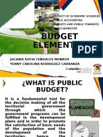 BUDGET ELEMENTS.pptx