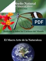 El Diseño Natural