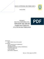 Tincion de Gram Practica.pdf