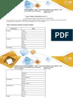 Anexo Trabajo Colaborativo Fases 1 -4 (2) personalidad