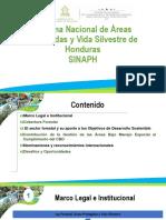 ICF _ Sector Forestal reas Protegidas y Vida Silvestre _ ANA