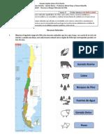 Guía N° 3 - Historia y Geografía - 5° Básico - Unidad 1 - Recursos y Riesgos Naturales