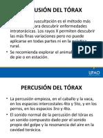 SEMIOLOGIA - PERCUSION DEL TORAX