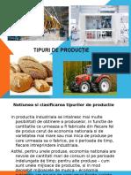 Prezentare Tipuri de  productie