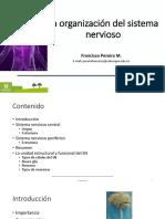 1. La organización del sistema nervioso