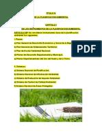 reglamento general de gestion ambielatl TITULO IV, V y VI