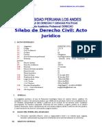 Silabo Derecho Civil, Acto Juridico (1)