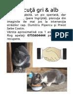 print-pisicuta.pdf