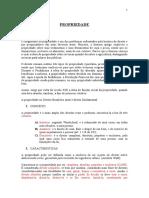 APOSTILA_PROPRIEDADE.doc