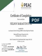 certificate-19twrn-135222-1r93