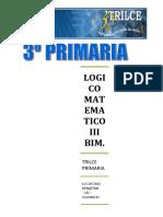 LOG.MAT.  III BIM.doc