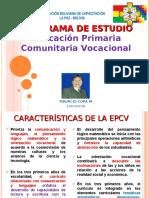 CAMPOS DE SABERES EPCV 2014 Figx..ppt