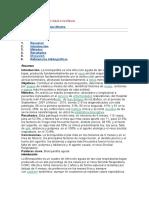 Bronquiolitis 2MB.doc