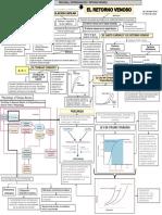 MAPA CONCEPTUAL RETORNO VENOSO en pdf