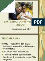 2. BBLR, PMK, Pijat Prematur