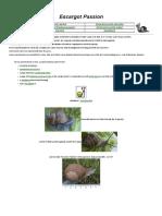 escargot - heliciculture 1-merged