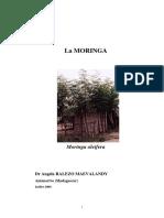 Moringa oleifera_Hippocratus