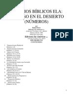 4. FRACASO EN EL DESIERTO (NÚMEROS)
