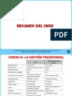 Resumen SBOK