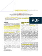 E2. PP. waste plastic polymer modified.pdf