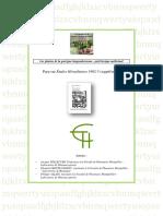 Les-plantes-de-la-garrigue-languedocienne-petit-lexique-médicinal