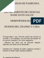 HUESOS DEL CRANEO Y CARA    original.ppt