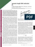 PNAS cover paper 2004 10979.full
