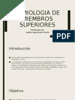 SEMIOLOGIA DE MIEMBROS SUPERIORES