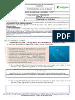 MATEMATICAS CICLO III.docx