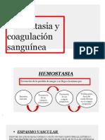 HEMOSTASIA 1.pptx