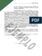 FORMATO_ACTA_INSTALACI_N