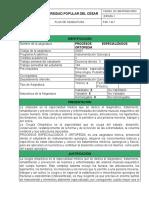 1. FORMATO PLAN DE ASIGNATURA PROCESOS ESPECIALIZADOS II DE ORTOPEDIA