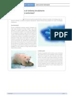 COMORESPONDEELSISTEMACIRCULATORIOALASCONDICIONESEXTREMAS.pdf