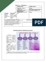 REGISTROS, NIVELES Y VARIABLES DE LA LENGUA
