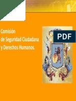 SEGURIDAD CIUDADANA CCS
