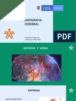 6to Neuro 2019.pdf