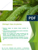 uso de las plantas