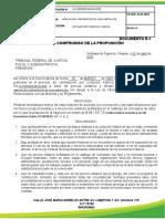 EJEMPLO DE FORMATO ECONOMICO A12  PARA UNA LICITACIÓN
