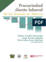 Precariedad-y-desaliento-laboral. 2019 .pdf