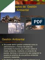 Conceptos de gestion Ambiental .pdf